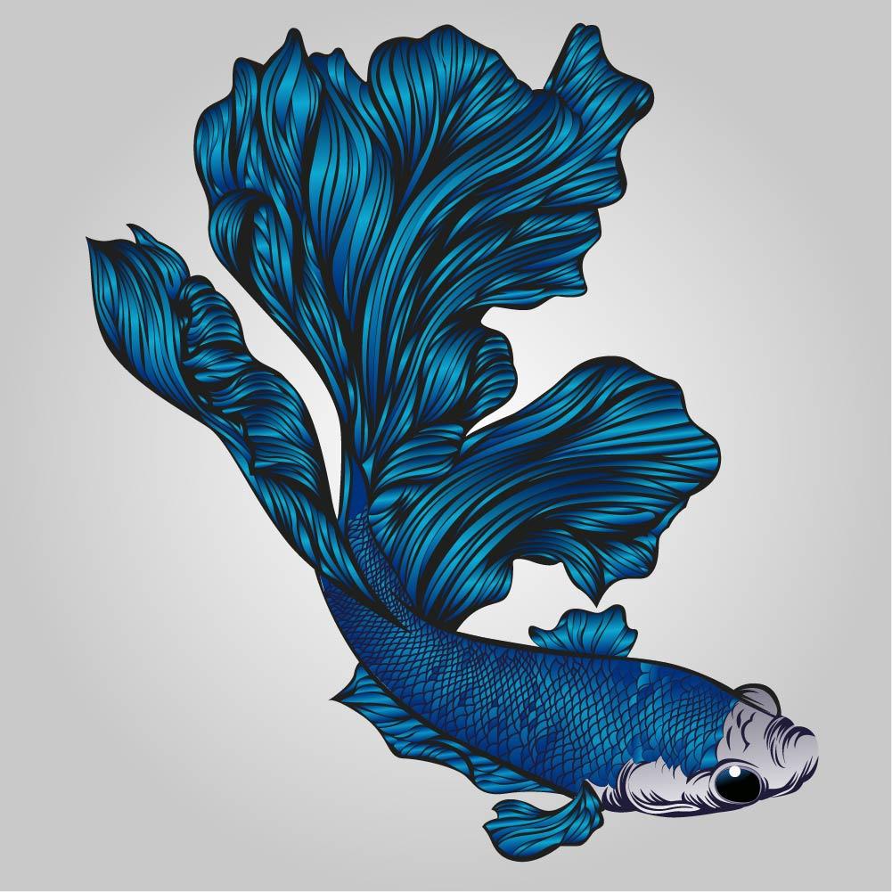 ออกแบบโลโก้-ปลากัดจีน